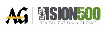 Vision 500 Logo